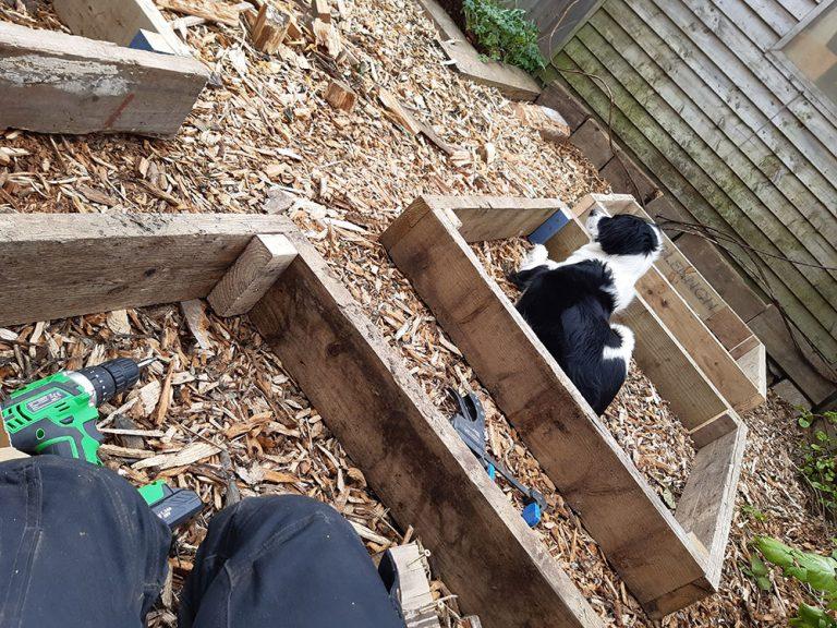 building raised beds for vegetables