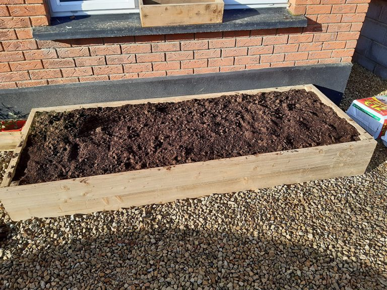 Building a raised bed - compost
